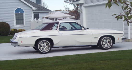 Rick wenzel for 1974 oldsmobile cutlass salon for sale